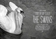 Item image: The Swans