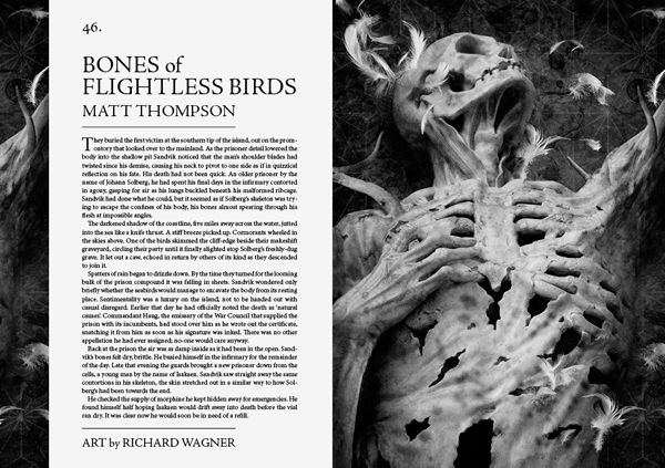 Bones of Flightless Birds