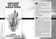 Item image: Asleep in the Deep End