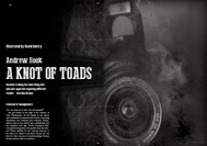 Item image: A Knot of Toads