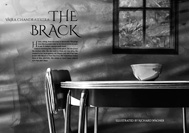 Item image: The Brack